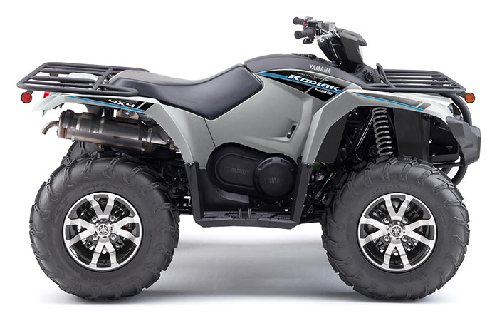 2020 Yamaha Kodiak 450 EPS SE in Cambridge, Ohio - Photo 1