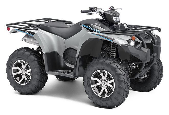 2020 Yamaha Kodiak 450 EPS SE in Dubuque, Iowa - Photo 2