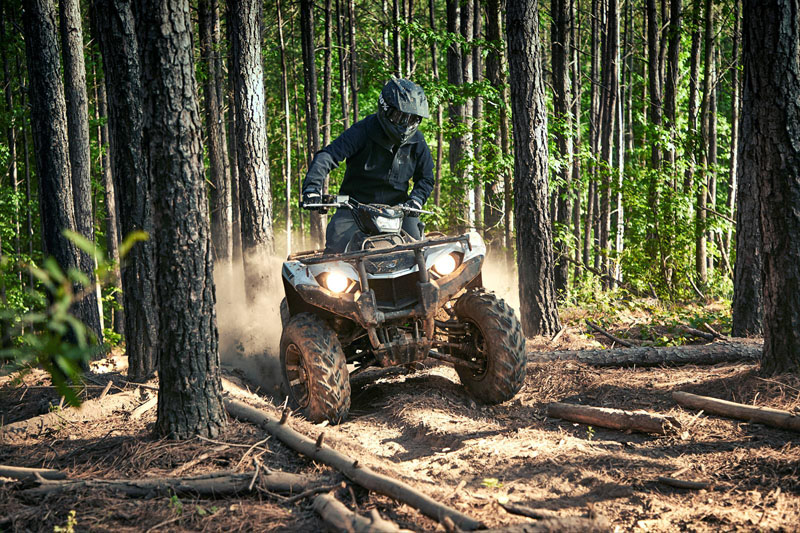 2020 Yamaha Kodiak 450 EPS SE in Dubuque, Iowa - Photo 4