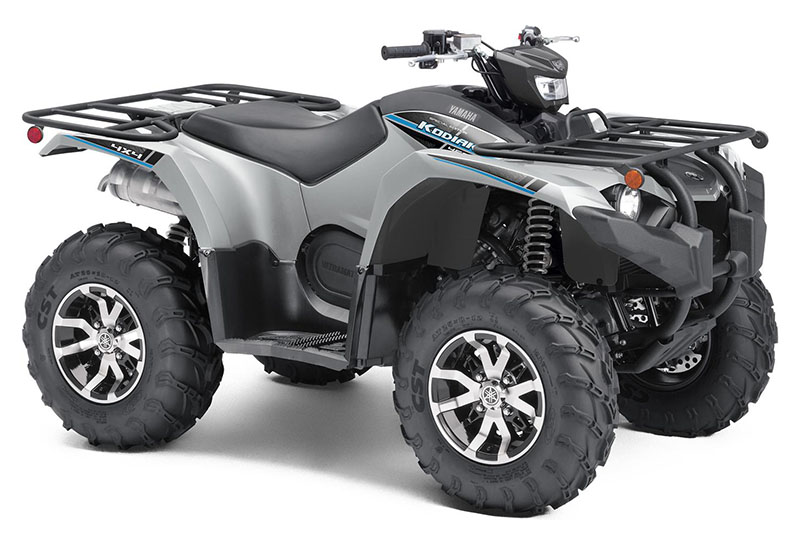2020 Yamaha Kodiak 450 EPS SE in Sacramento, California - Photo 2