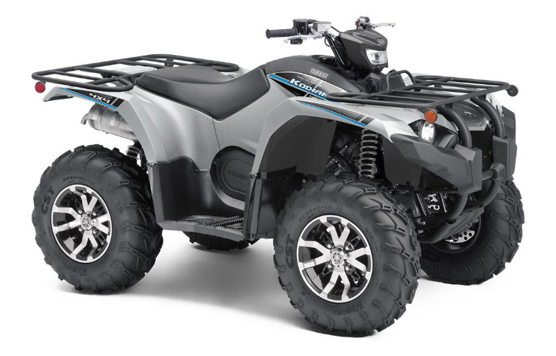 2020 Yamaha Kodiak 450 EPS SE in Escanaba, Michigan