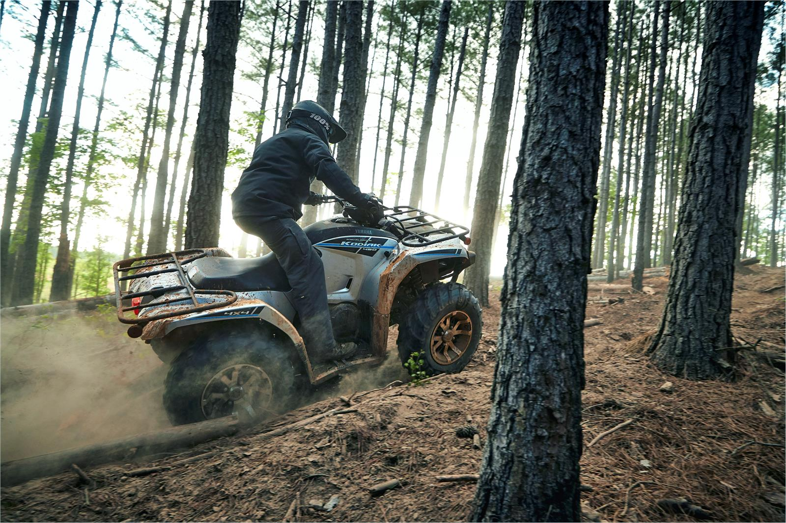 2020 Yamaha Kodiak 450 EPS SE in Virginia Beach, Virginia - Photo 13