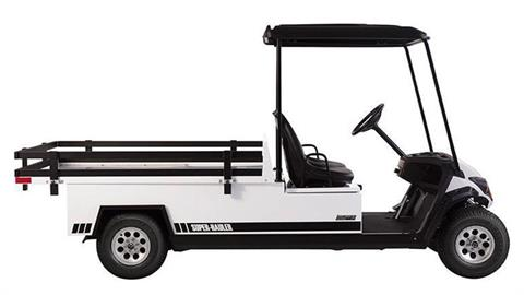 2020 Yamaha Adventurer Super Hauler (AC Electric) in Ishpeming, Michigan