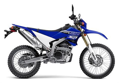 2020 Yamaha WR250R in San Jose, California - Photo 1