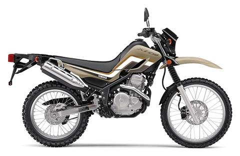 2020 Yamaha XT250 in Woodinville, Washington