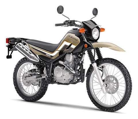 2020 Yamaha XT250 in San Jose, California - Photo 2