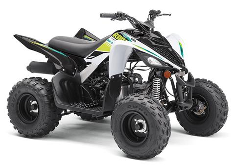 2021 Yamaha Raptor 90 in Saint Helen, Michigan - Photo 2