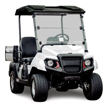 2020 Yamaha Umax Bistro Deluxe (Gas EFI) in Tyler, Texas - Photo 1