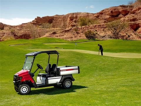 2020 Yamaha Umax Two (AC) in Cedar Falls, Iowa - Photo 2