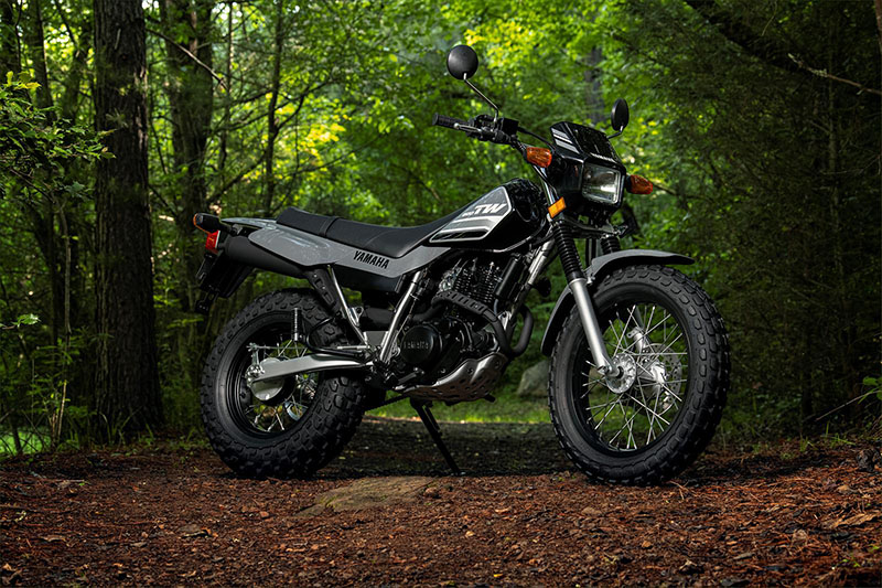 2021 Yamaha TW200 in Berkeley, California - Photo 12