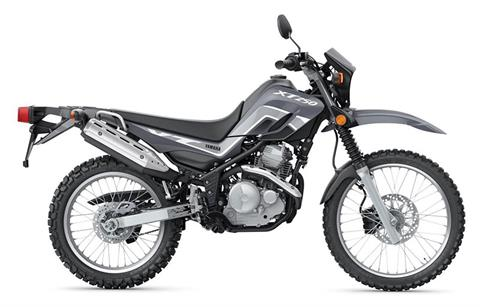 2021 Yamaha XT250 in Hendersonville, North Carolina