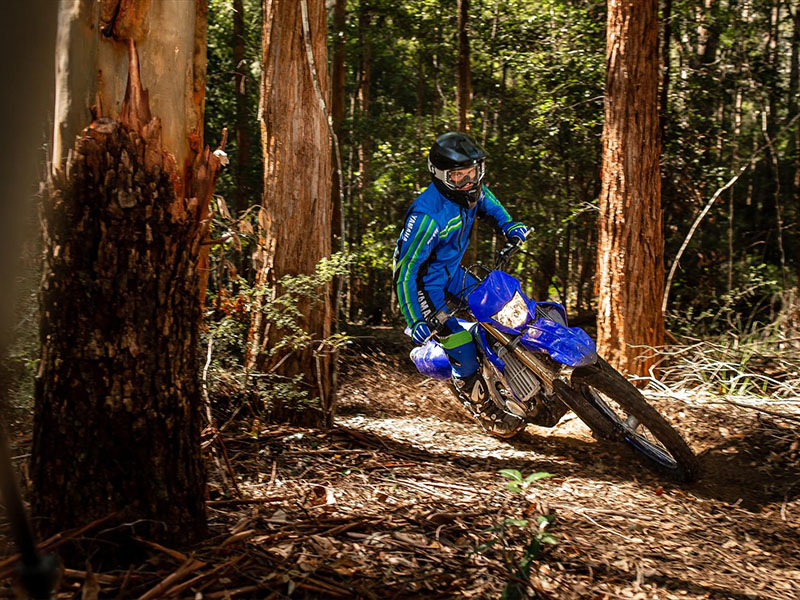 2021 Yamaha WR250F in San Jose, California - Photo 11