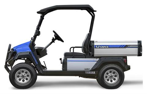 2021 Yamaha Umax Two Rally AC in Ishpeming, Michigan