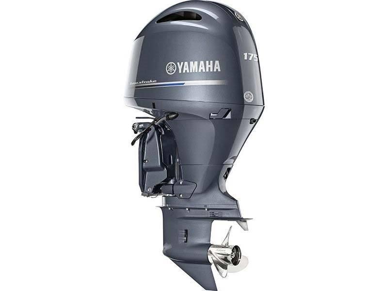 2016 Yamaha F175XA in Sparks, Nevada