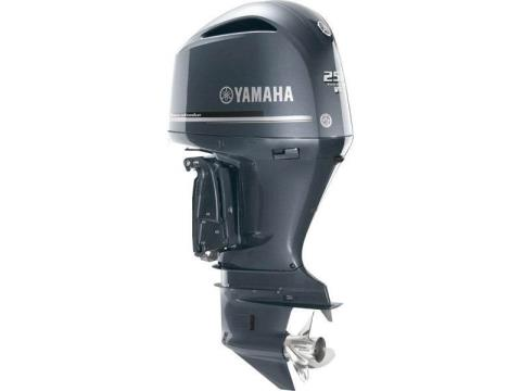 2016 Yamaha F250UCA in Sparks, Nevada