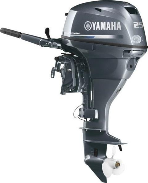 2017 Yamaha F25LEA in Newport News, Virginia