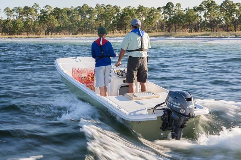 2019 Yamaha F25 Portable Tiller ES in Coloma, Michigan